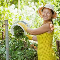 Význam biokompostu pro hnojení malých zahrádek