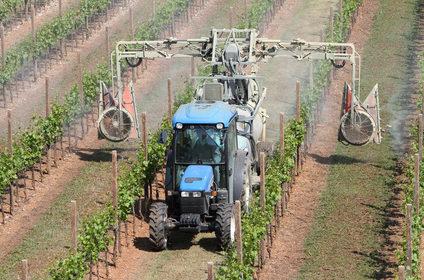 Hnojení a postřiky vinné révy