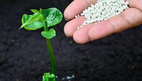 Obsah čistých živin v průmyslových hnojivech