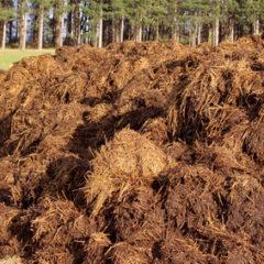 Podzimní hnojení přírodními hnojivy